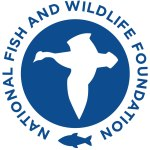 national-fish-and-wildlife-foundation