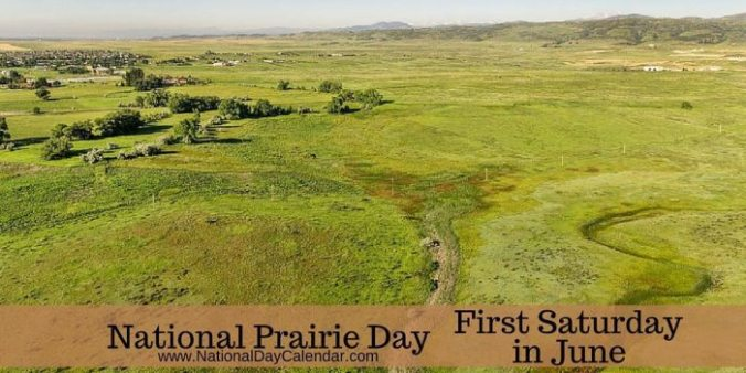 National-Prairie-Day-wide